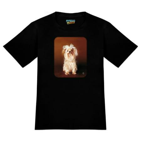 Boston Terrier In Halloween Costumes (Yorkie Yorkshire Terrier Dog Bow In Hair Men's Novelty)