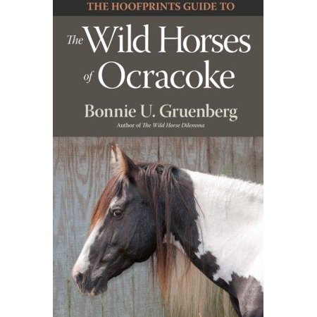 The Hoofprints Guide To The Wild Horses Of Ocracoke Island  Nc