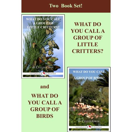 Two Book Set! What Do You Call A Group Of Little Critters and What Do You Call A Group of Birds - (Names For Groups Of Animals And Birds)
