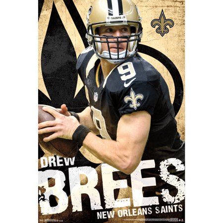 New Orleans Decor (Drew Brees New Orleans Saints 22'' x 34'' Player Poster - No)