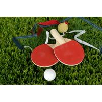 LAMINATED POSTER Table Tennis Bat Sport Bat Ping-pong Table Tennis Poster Print 24 x 36