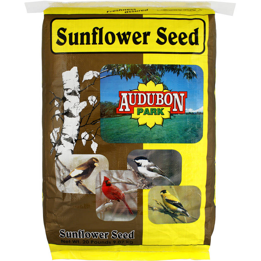 Audubon Park 10427 20 Lb Black Oil Sunflower Seed