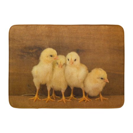 GODPOK Brown Cute Close Up Yellow Chicks on The Floor and Wooden Beautiful Little Chickens Group of Adorable Rug Doormat Bath Mat 23.6x15.7 inch
