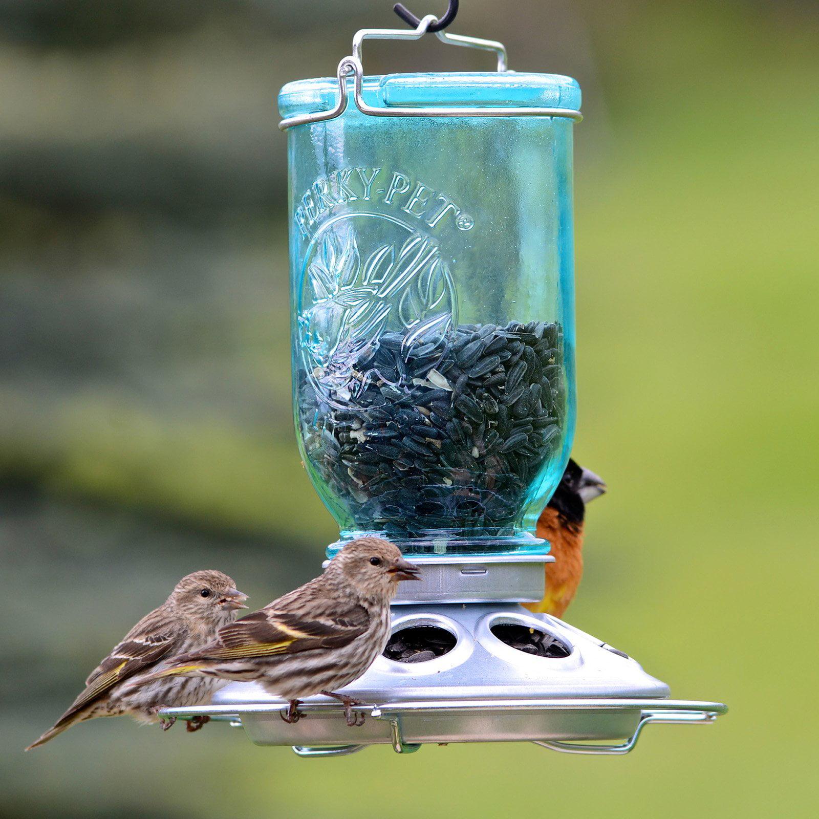 perky pet mason jar wild bird feeder walmart com