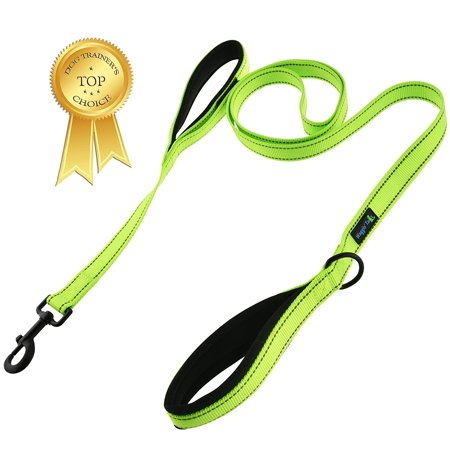Waggin' Tails Soft &Thick Dual Handle 6FT Dog Leash, Premium Strength Double Padded Handles - Great Control for Medium, Large or XLarge Dog - Vibrant Colors with Reflective Option 'Classic Comfort'