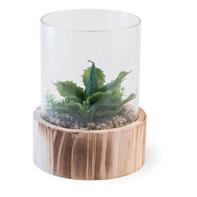 Boston International Yh18400 Cactus Terrarium Succulents Walmart Com