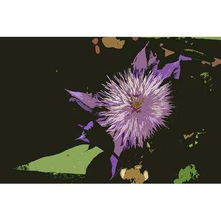 Canvas Print Purple Flower Black Green Clematis Background Stretched Canvas 10 x (Best Dark Purple Clematis)