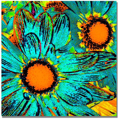 "Trademark Fine Art ""Pop Daisies"" Canvas Wall Art by Amy Vangsgard"