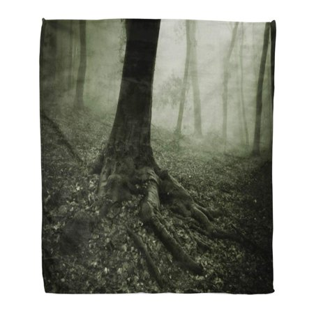 LADDKE Flannel Throw Blanket Green Spooky Roots of Big Tree Fog in Forest Horror Nature Scary Dark 50x60 Inch Lightweight Cozy Plush Fluffy Warm Fuzzy Soft ()