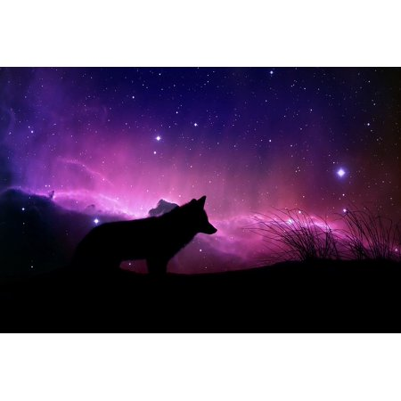 LAMINATED POSTER Cosmic Design Space Color Wolf Fantasy Magical Poster Print 24 x 36