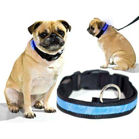 Biltek Blue LED Light Dog Collar - Small - Dog Pet Night Safety Fashionable Flashing Light Up Collar Nylon Large Adjustable