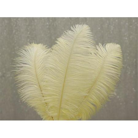 Feather Craft (Efavormart 12PCS 13