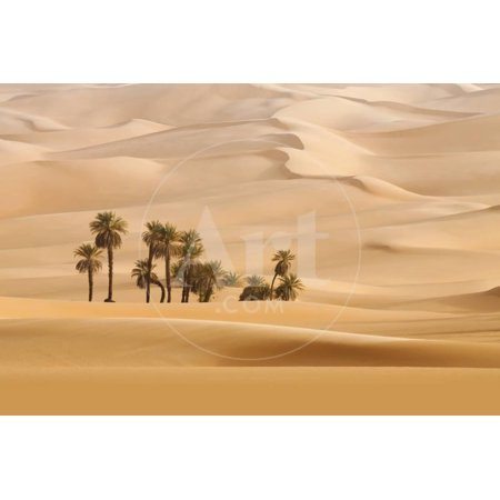 Huge Dunes of the Desert. Fine Place for Photographers and Travelers. Beautiful Structures of Sandy Print Wall Art By Denis
