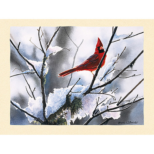 "Lang ""Songbirds"" Assorted Boxed Christmas Cards"