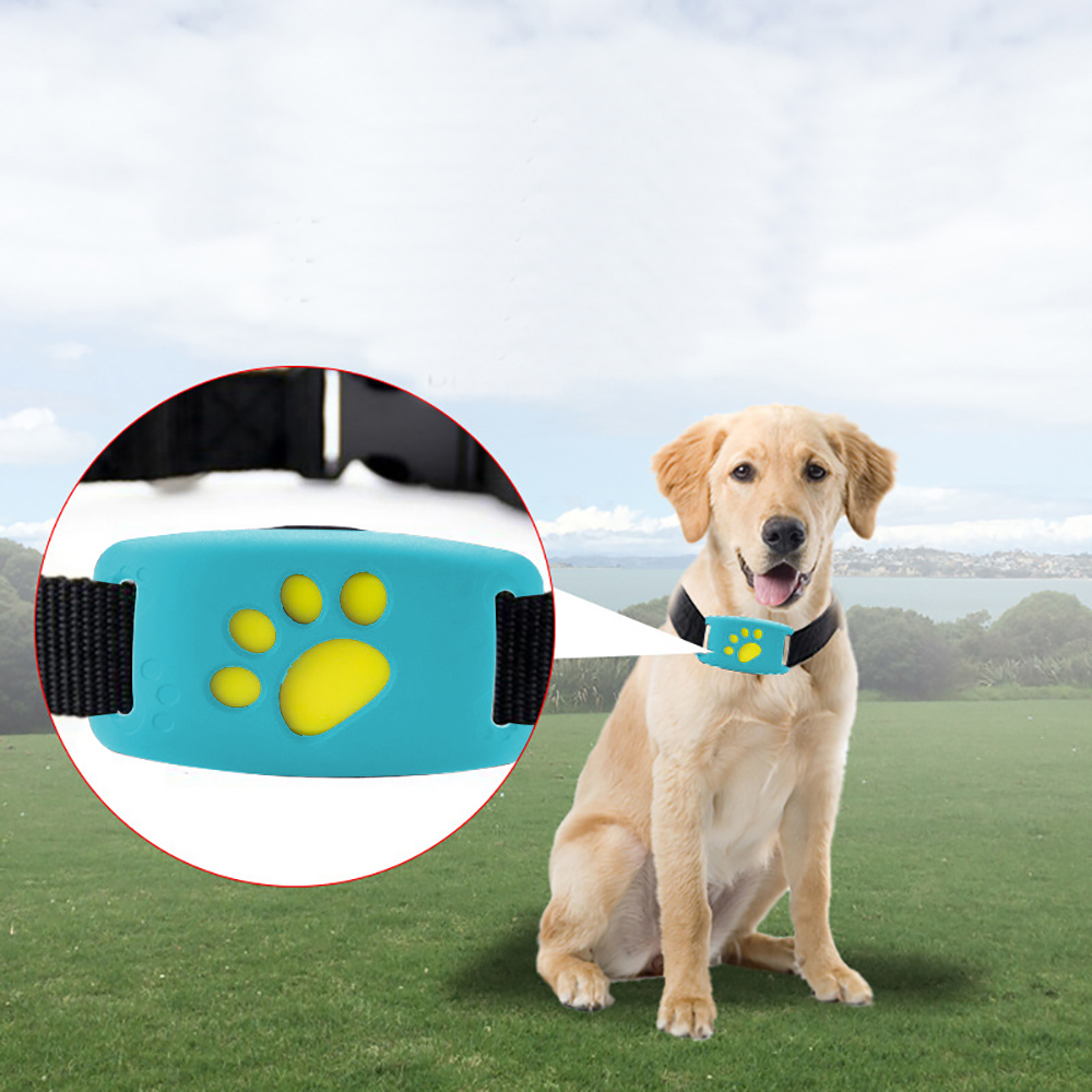 Best Cat Trackers - Reactionnx Pet GPS Tracker Device Collar and Activity Review