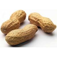 Bulk Nuts Peanuts D/R N/S Jumbo 30 Lb (Pack of 1)