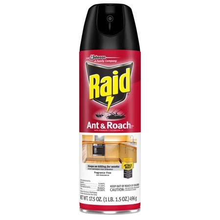 Raid Ant & Roach Killer 26, Fragrance Free, 17.5 (Best Indoor Sugar Ant Killer)