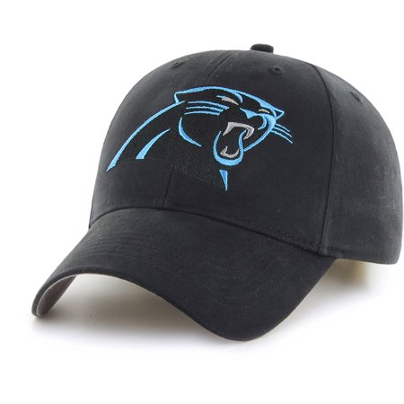 Carolina Panthers Skull Cap (NFL Carolina Panthers Basic Cap/Hat by Fan)