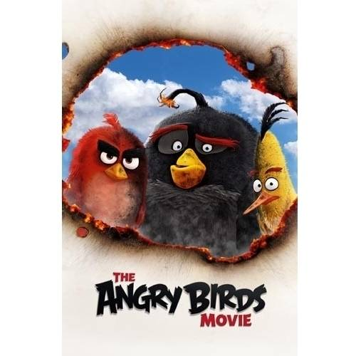 Angry Birds Movie (Blu-ray 3D/ DVD & Blu-ray Combo w/ Digital Copy)