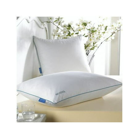 Click here for SleepBetter Iso-Cool Polyester Bed Pillow, Queen prices
