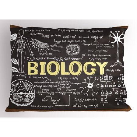 Educational Pillow Sham Black Chalkboard Biology Hand Written Symbols School Classroom, Decorative Standard Size Printed Pillowcase, 26 X 20 Inches, Black Brown Pale Yellow, by Ambesonne ()