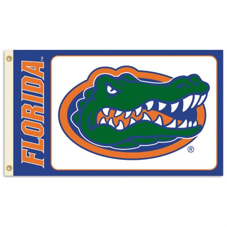 Bsi Products Inc Florida Gators Flag With Grommets Flag With Grommets