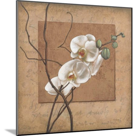 Golden Orchid II Wood Mounted Print Wall Art By Lee Carlson