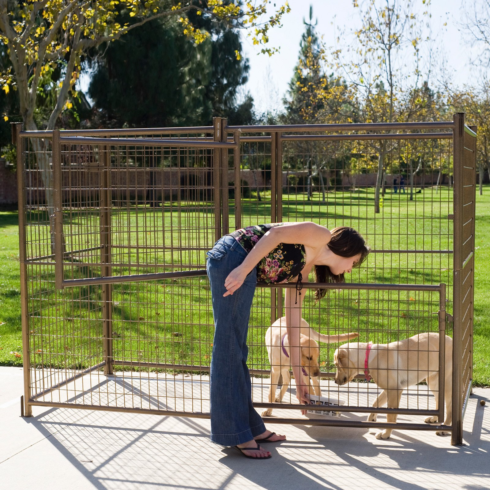 Image of Advantek Modular Outdoor Dog Kennel