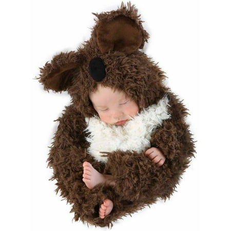 Anne Geddes Koala Infant Halloween Costume