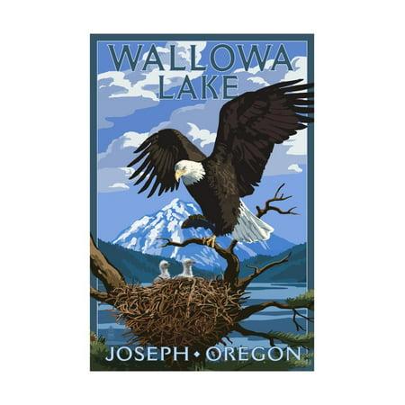 Joseph, Oregon - Wallowa Lake Eagle and Chicks Print Wall Art By Lantern Press