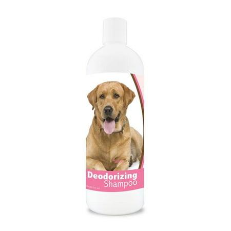 Healthy Breeds 840235109587 16 oz Labrador Retriever Deodorizing Shampoo - Aloe - image 1 de 1