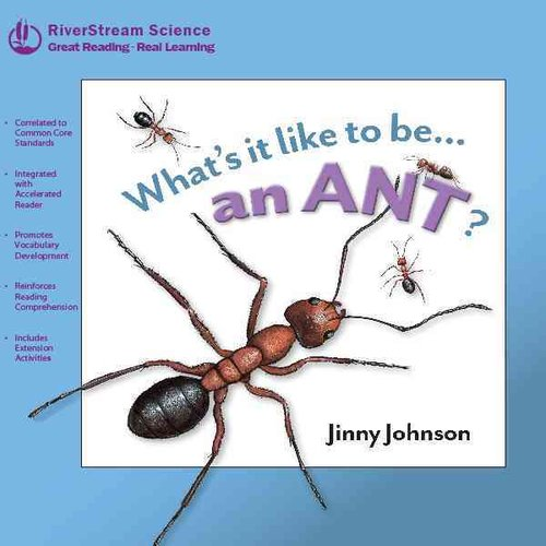 Whats It Like to Be... an Ant
