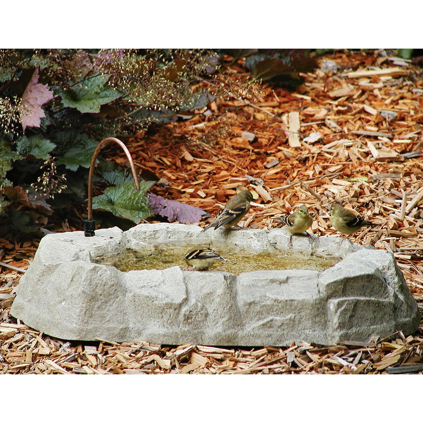 Backyard Nature Products Rocky Mountain Ground Birdbath by Backyard Nature Products Inc