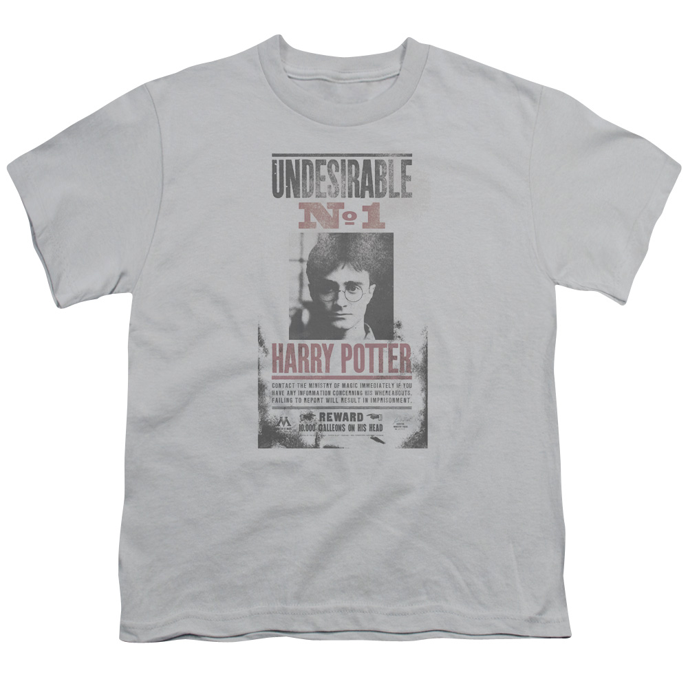 Harry Potter Undesirable No1 Distressed Big Boys Youth Shirt
