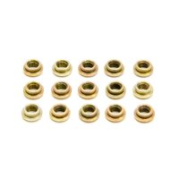 Weld Racing Wheel Center Insets 5/16-24 15 pc P/N P613-7060