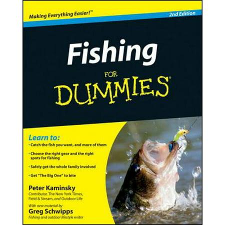 Fantasy Football Dummies (Fishing for Dummies - eBook)