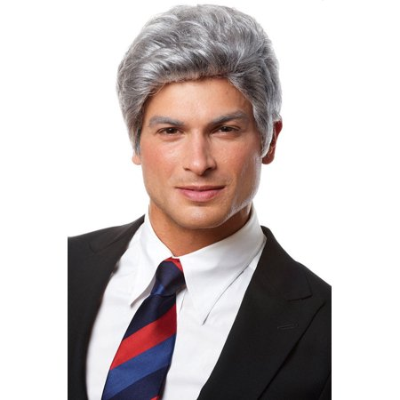 Mr. President Costume Wig - Grey Costume Wig