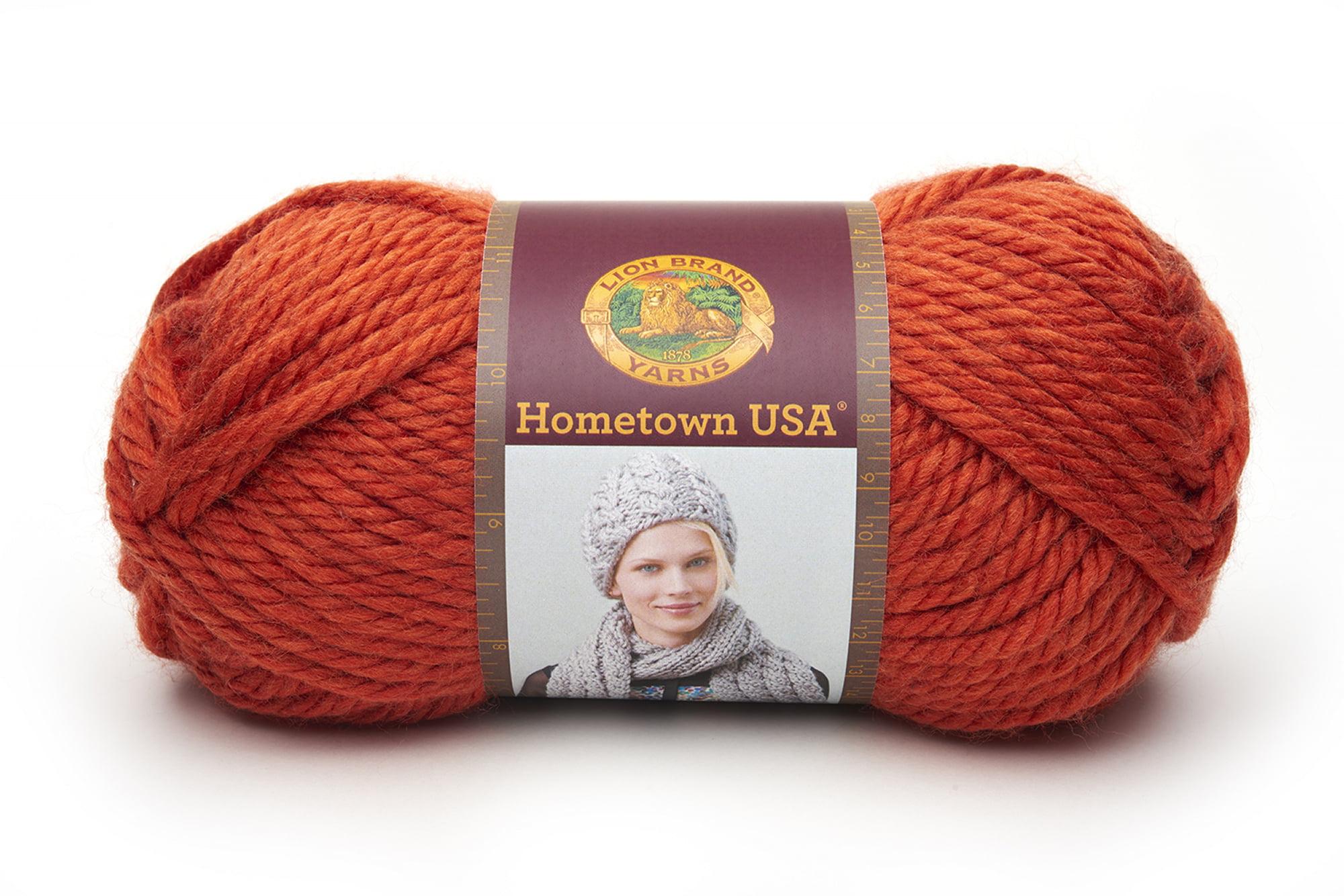 Lion Brand Yarn 135-136 Hometown USA Yarn Portsmouth Pumpkin