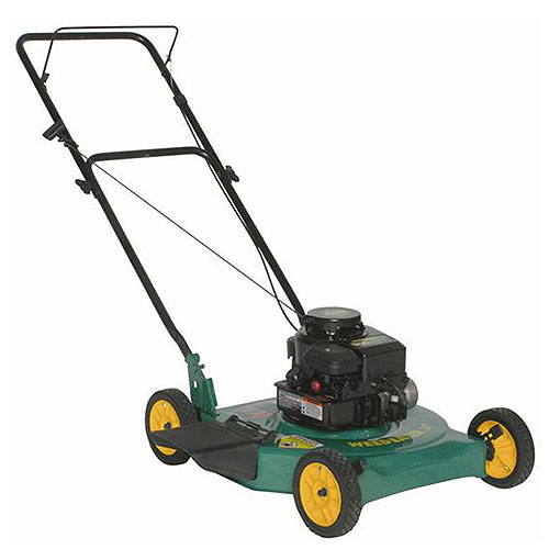 Weed Eater 22in 2 In 1 Side Discharge W/mulch