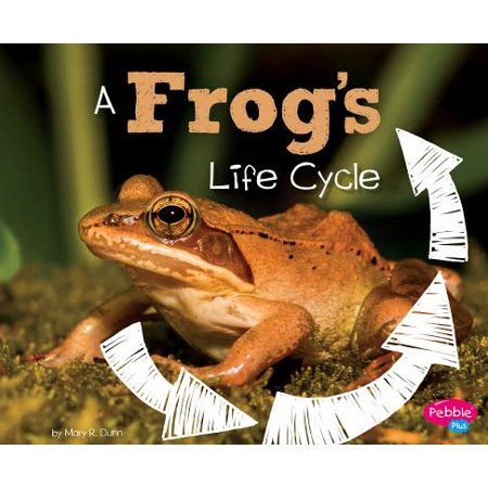 Explore Life Cycles: A Frog's Life Cycle (Hardcover) (Life Cycle Frog)