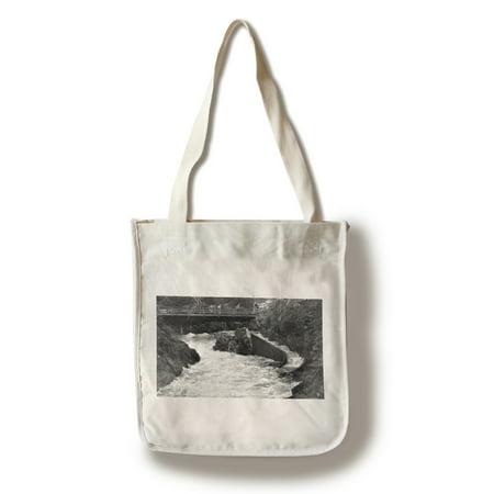 - Ketchikan, Alaska - Ketchikan Creek Falls, Fish Ladder Photo (100% Cotton Tote Bag - Reusable)