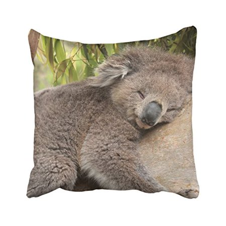 WinHome Decorative Decorative Standard Pillow Case Animals koala bear tree sleeps bamboo leaves Size 18x18 inches Two - Bear Decorative Pillow
