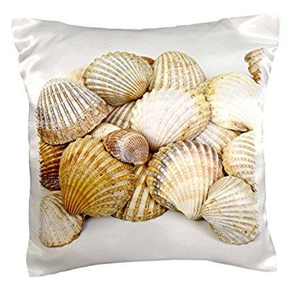 3dRose Sea Shells by the Sea Shore - Summer - Beach Theme, Pillow Case, 16 by 16-inch - Summer Theme Ideas