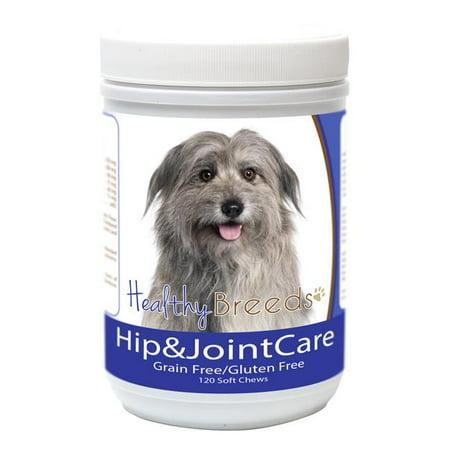 Healthy Breeds 840235182795 Soins des hanches et des articulations du berger des Pyr-n-es, 120 unit-s - image 1 de 1