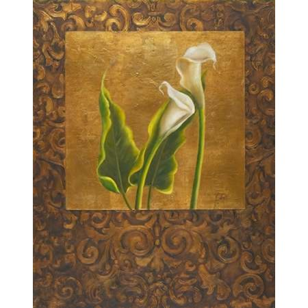 Calla Lily with Arabesque II Poster Print by Patricia Pinto Callas Poster Print