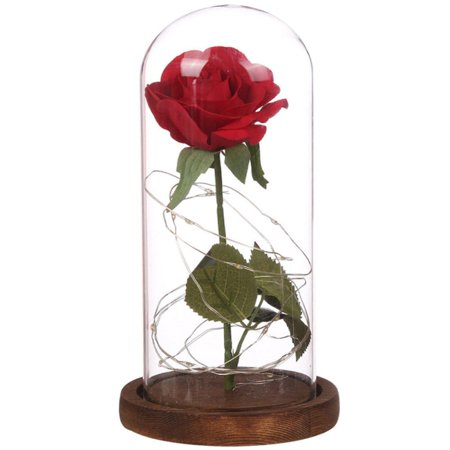 Red Enchanted Rose Gift for Mom Mother's Day happy, LED light & Battery Powered, That Last Forever flowers in Glass , Best Gift for Wedding Anniversary(Style