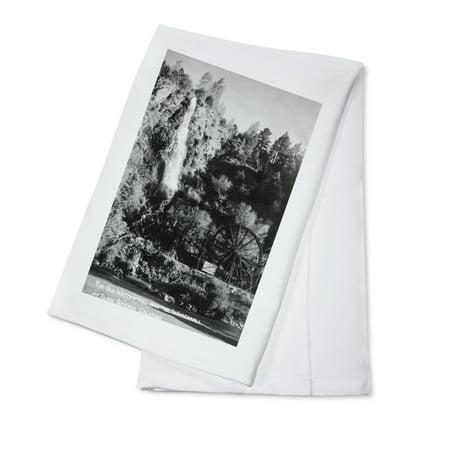 Idaho Springs, Colorado - Old Waterwheel and Waterfall Photograph (100% Cotton Kitchen Towel) - Halloween Party Colorado Springs