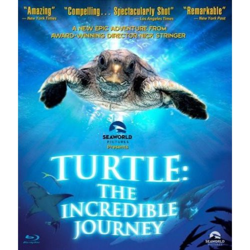 Turtle: The Incredible Journey (Blu-ray) (Widescreen)