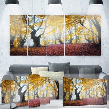 DESIGN ART Designart 'Yellow Forest Autumn Trail' Landscape Photo Metal Wall - Forest Metal Wall