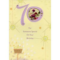 Designer Greetings For Someone Special Sequin Filled Die Cut Window Age 70 / 70th Birthday Card